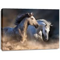 Edith Leanne - Horses - Running at Dusk