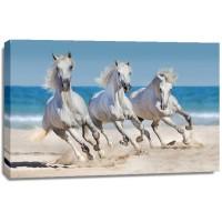 Jocelyn Borivoj - Horses Run Along The Coast