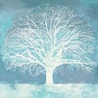 Alessio Aprile - Aqua Oak