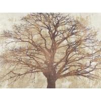 Alessio Aprile - Sacred Oak